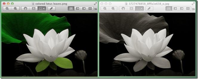 InstantPhotoColor before after
