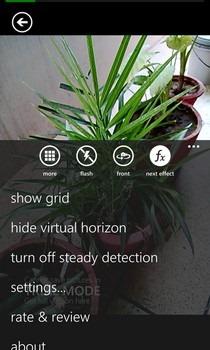 OneShot WP Options